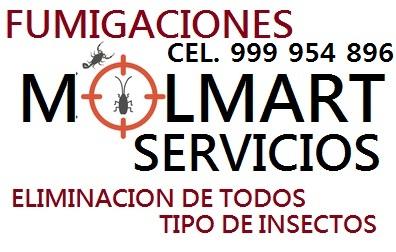 Servicio de fumigacion