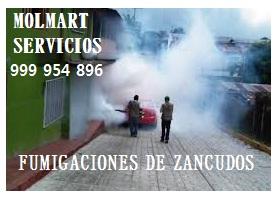 Fumigaciones de casas en pueblo libre